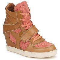Pantofi Femei Pantofi sport stil gheata Ash COCA Maro / Corai