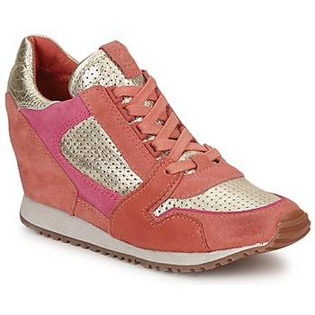 Pantofi Femei Pantofi sport Casual Ash DEAN BIS Auriu / Corai / Roz