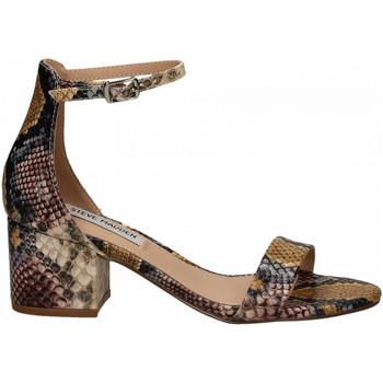 Pantofi Femei Sandale  Steve Madden IRENEE snake