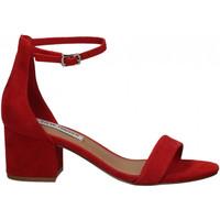 Pantofi Femei Sandale  Steve Madden IRENEE SUEDE red