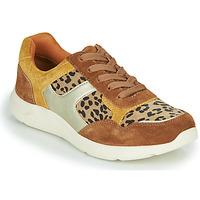 Pantofi Femei Pantofi sport Casual Damart 62328 Bej / Galben