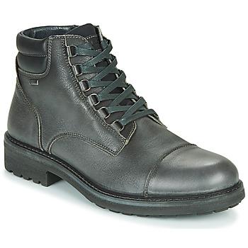 Pantofi Bărbați Ghete IgI&CO UOMO FREDDY GTX Gri