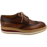 Pantofi Bărbați Pantofi Derby Calce  Beige