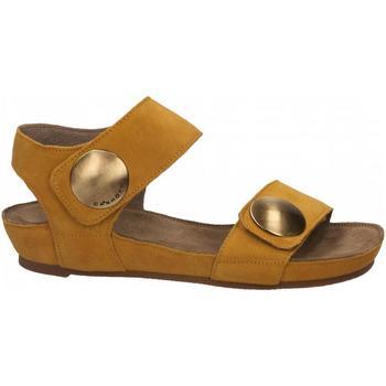 Pantofi Femei Sandale  Ca Shott SUEDE sole