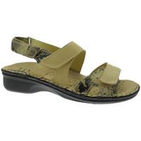 Pantofi Femei Sandale  Calzaturificio Loren LOM2833ta tortora