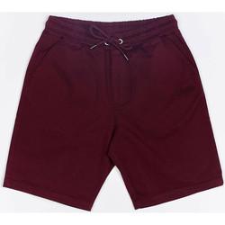 Îmbracaminte Bărbați Pantaloni scurti și Bermuda Wrung Short  Shark rouge bordeaux