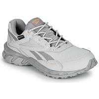 Pantofi Pantofi sport Casual Reebok Classic RIDGERIDER 5 GTX Gri