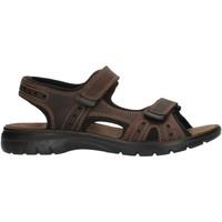 Pantofi Bărbați Sandale sport Imac 503370 Brown