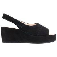 Pantofi Femei Sandale  Högl Pappilon Schwarz Sandals Black