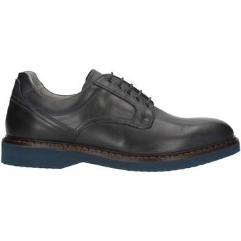Pantofi Bărbați Pantofi Derby Nero Giardini I001690U Blue
