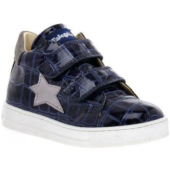 Pantofi Fete Pantofi sport Casual Naturino FALCOTTO 2C06 SASHA BLEU Blu