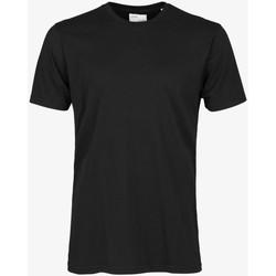 Îmbracaminte Bărbați Tricouri mânecă scurtă Colorful Standard CLASSIC ORGANIC TEE deep-black-nero