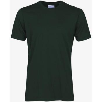 Îmbracaminte Bărbați Tricouri mânecă scurtă Colorful Standard CLASSIC ORGANIC TEE hunter-green-verde