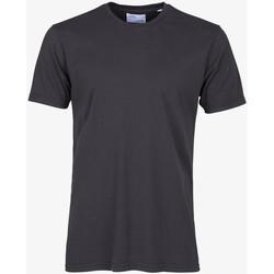 Îmbracaminte Bărbați Tricouri mânecă scurtă Colorful Standard CLASSIC ORGANIC TEE lava-grey-grigio