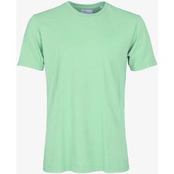 Îmbracaminte Bărbați Tricouri mânecă scurtă Colorful Standard CLASSIC ORGANIC TEE faded-mint