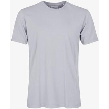 Îmbracaminte Bărbați Tricouri mânecă scurtă Colorful Standard CLASSIC ORGANIC TEE limestone-grey
