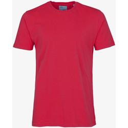Îmbracaminte Bărbați Tricouri mânecă scurtă Colorful Standard CLASSIC ORGANIC TEE scarlet-red