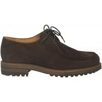 Pantofi Bărbați Pantofi Derby Antica Cuoieria CORTINA nutella