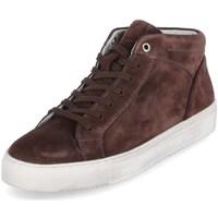 Pantofi Bărbați Pantofi sport stil gheata Sioux 38192 Cafenii