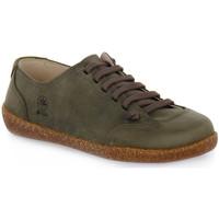 Pantofi Bărbați Pantofi sport Casual Bioline FUMO EGEO INGRASSATO Marrone