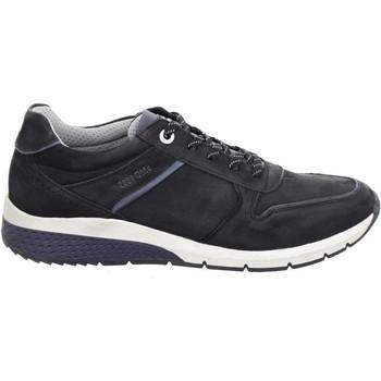 Pantofi Bărbați Pantofi sport Casual Salamander Tonjo Black Black