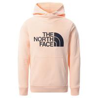 Îmbracaminte Fete Hanorace  The North Face DREW PEAK HOODIE 2.0 Roz