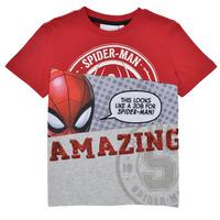 Îmbracaminte Băieți Tricouri mânecă scurtă Desigual 21SBTK08-3005 Multicolor
