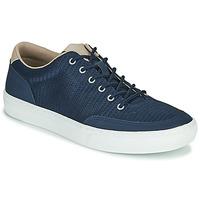 Pantofi Bărbați Pantofi sport Casual Timberland ADV 2.0 GREEN KNIT OX Albastru