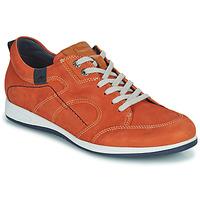 Pantofi Bărbați Pantofi sport Casual Fluchos 9734-CRETA-CUERO Maro