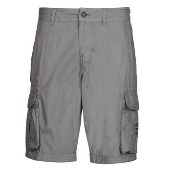 Îmbracaminte Bărbați Pantaloni scurti și Bermuda Napapijri NORI Gri