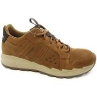Pantofi Bărbați Pantofi sport Casual Caterpillar Stratify LO WP Cafenii