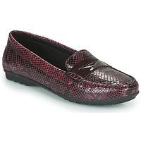Pantofi Femei Mocasini Geox D ELIDIA Bordo