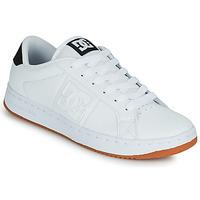 Pantofi Bărbați Pantofi de skate DC Shoes STRIKER Alb / Negru