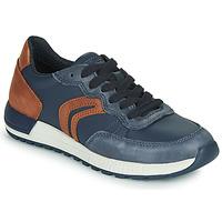 Pantofi Băieți Pantofi sport Casual Geox J ALBEN BOY Albastru