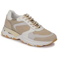 Pantofi Femei Pantofi sport Casual Lumberjack SWAY Bej / Alb