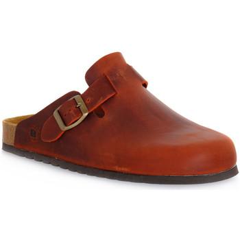 Pantofi Saboti Bioline RUGGINE INGRASSATO Arancione