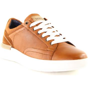 Pantofi Bărbați Pantofi sport Casual Wrangler WM01181A Maro