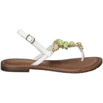Pantofi Femei  Flip-Flops Gardini 1108754 Alb