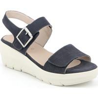 Pantofi Femei Sandale  Grunland SA1881 Albastru