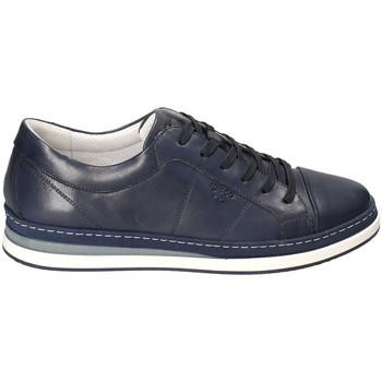 Pantofi Bărbați Pantofi sport Casual IgI&CO 3138100 Albastru