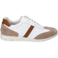 Pantofi Bărbați Pantofi sport Casual IgI&CO 3121811 Alb