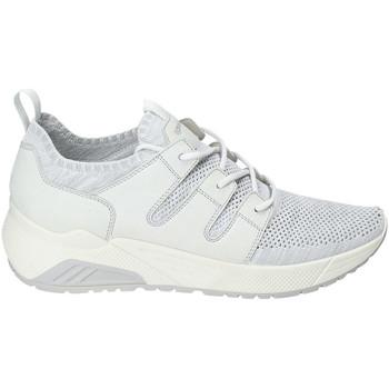 Pantofi Bărbați Pantofi sport Casual IgI&CO 3129322 Alb