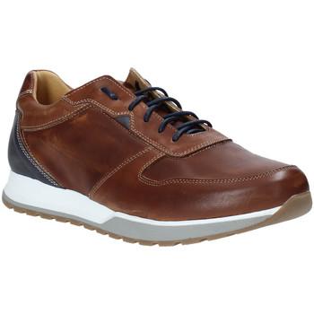 Pantofi Bărbați Pantofi sport Casual Rogers 5068 Maro