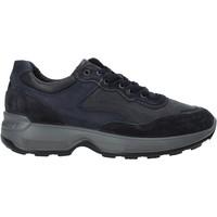 Pantofi Bărbați Pantofi sport Casual IgI&CO 4114311 Albastru