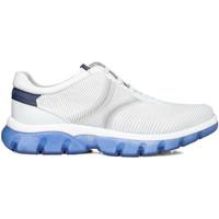 Pantofi Bărbați Pantofi sport Casual CallagHan 42700 Alb