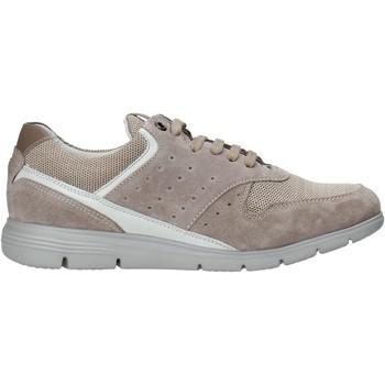 Pantofi Bărbați Pantofi sport Casual Impronte IM01000A Bej