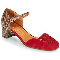 Pantofi Femei Pantofi cu toc Chie Mihara KAEL Roșu