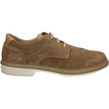 Pantofi Bărbați Pantofi Derby Enval 7885 Alții