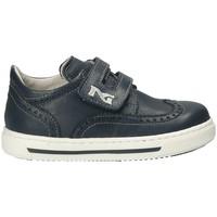 Pantofi Copii Pantofi sport Casual Nero Giardini P823110M Albastru