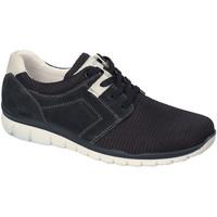 Pantofi Bărbați Pantofi sport Casual IgI&CO 3118300 Albastru